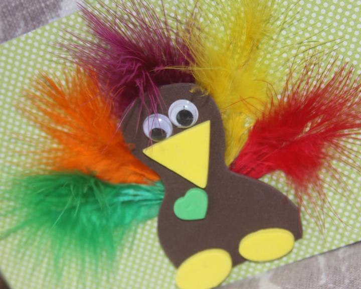 turkeycaed1