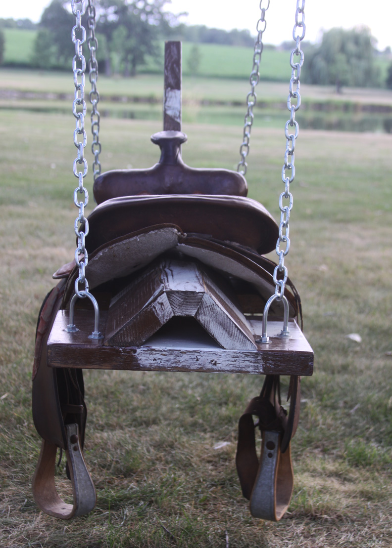 outdoor horse  saddle swing  spotted pony