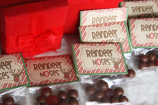 Fun Christmas Gift For Kids To Give Classmates Reindeer Noses