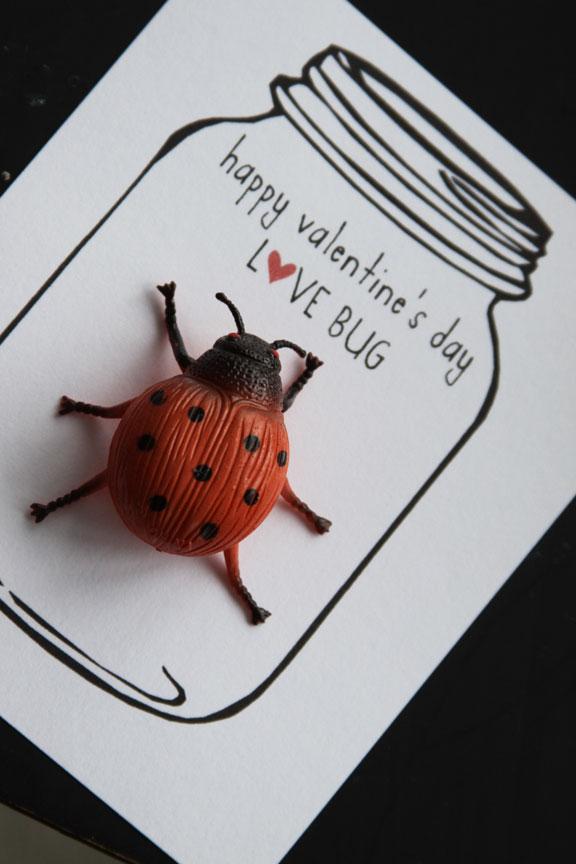 vdaybug3