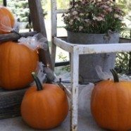 Outdoor Fall Decoration Using Pumpkins, Tulle And Christmas Lights