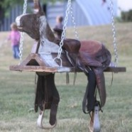 Outdoor Horse And Saddle Swing