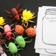 Love Bug – Cute Non-Candy Valentine